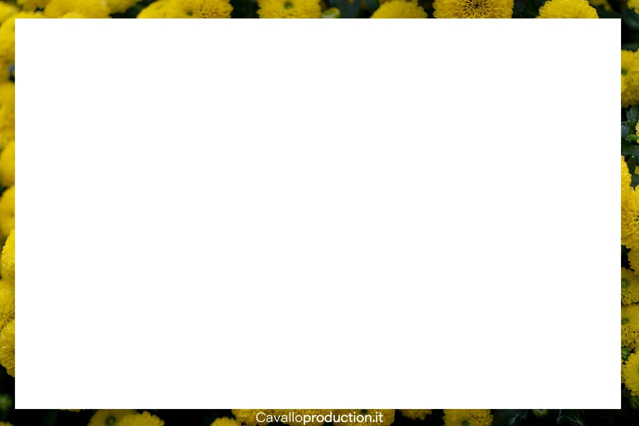 fiorigialligrande